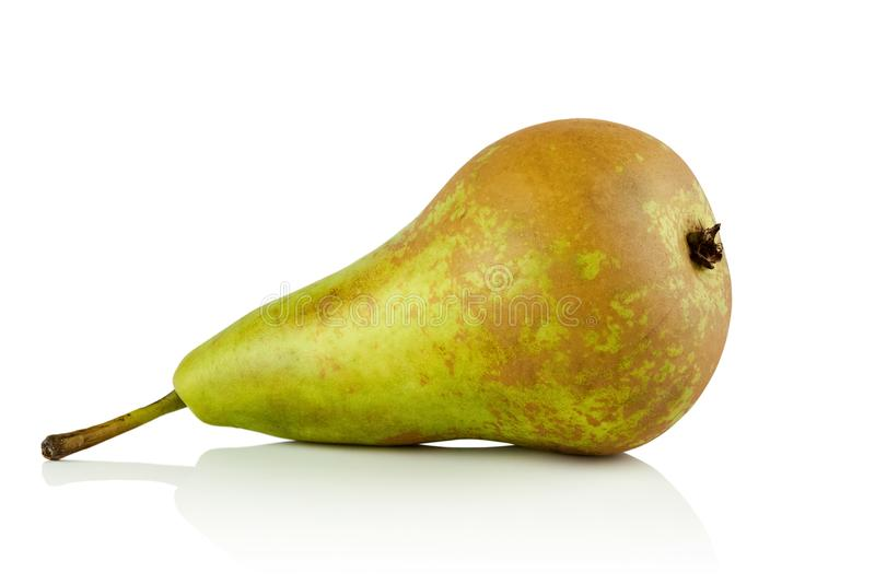 Pear varieties conference royalty free stock photography