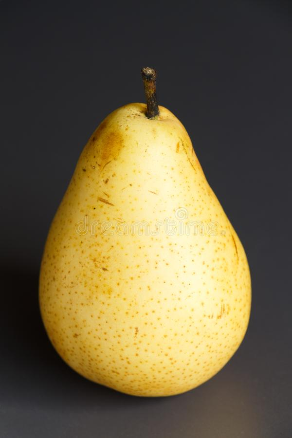 Pear williams. Yellow williams pear on a gray background stock images