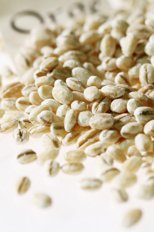 Pearl barley. Food, gastronomy, cooking, cookery royalty free stock photos