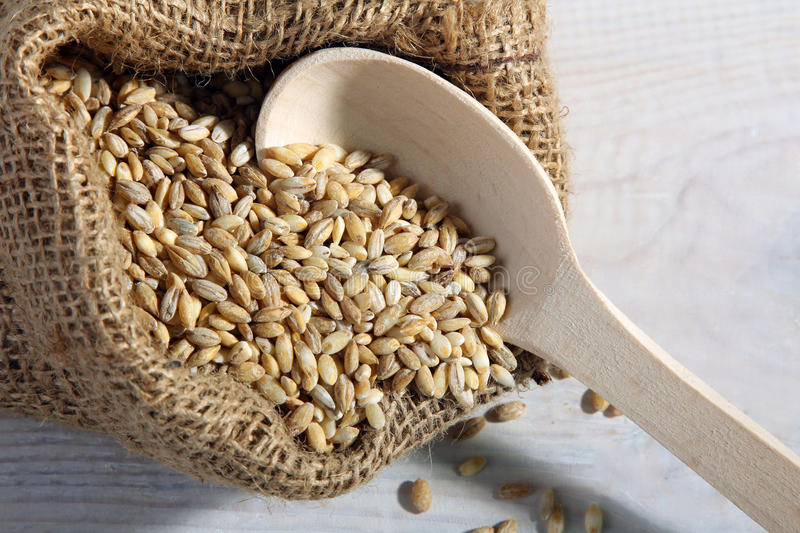 Pearl barley. On a wooden spoon in a pouch made on a white wooden table stock photography