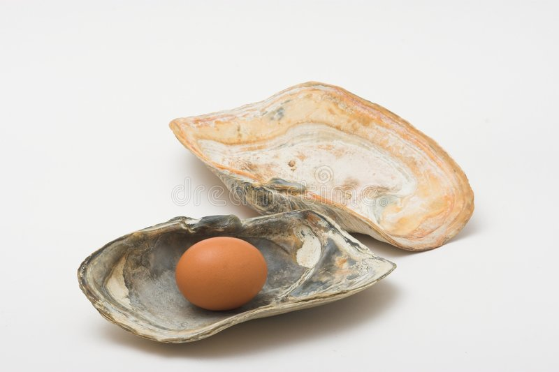 Pearl egg. Egg in a shell like a pearl royalty free stock photo
