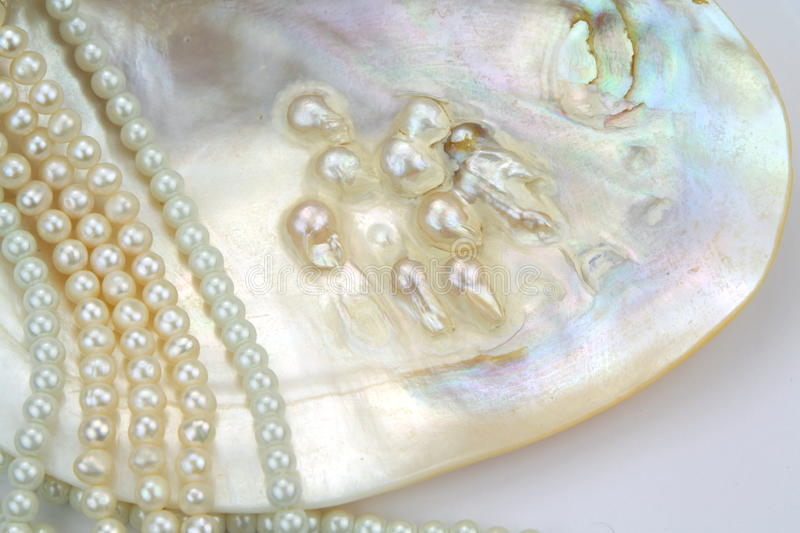 Pearl necklace with natural pearls in a oyster shell stock photo