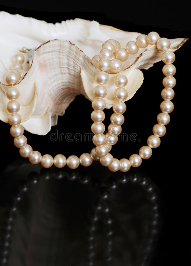 Pearl necklace in sea shell royalty free stock photography