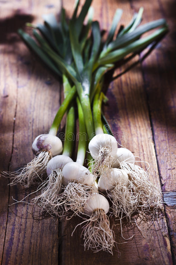 Download Pearl Onions Royalty Free Stock Photo - Image: 27410875