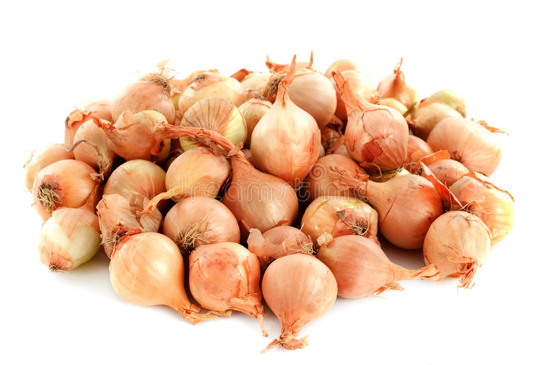Pearl Onions Stock Images