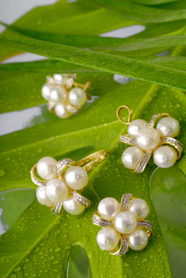 Pearl ornaments. On green leaves stock photos