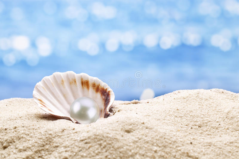 Pearl oyster in the sand. Blurred sea at the background royalty free stock photography