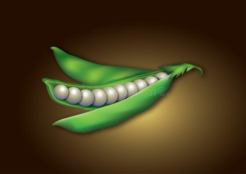 Download Pearl pee pod idea stock illustration. Illustration of luxury - 15020414