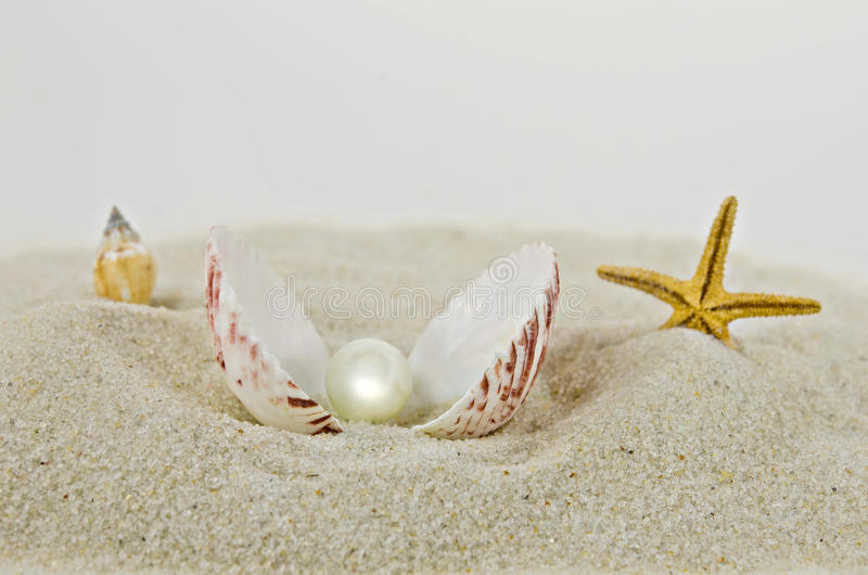Pearl in a seashell. With starfish in sand stock photos