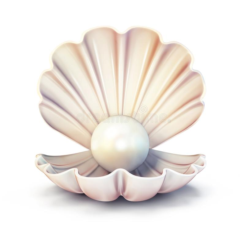 Pearl shell royalty free illustration