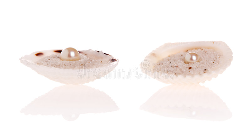 pearl white obraz royalty free