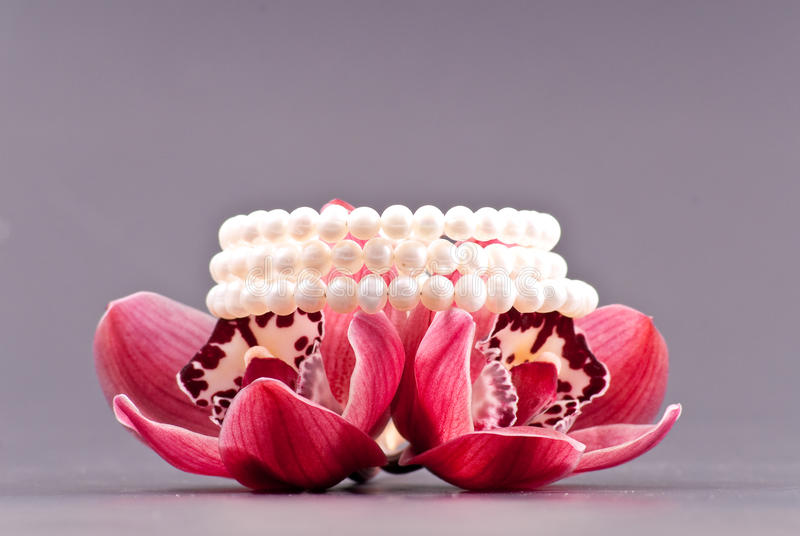 Pearls and Orchids stock photos
