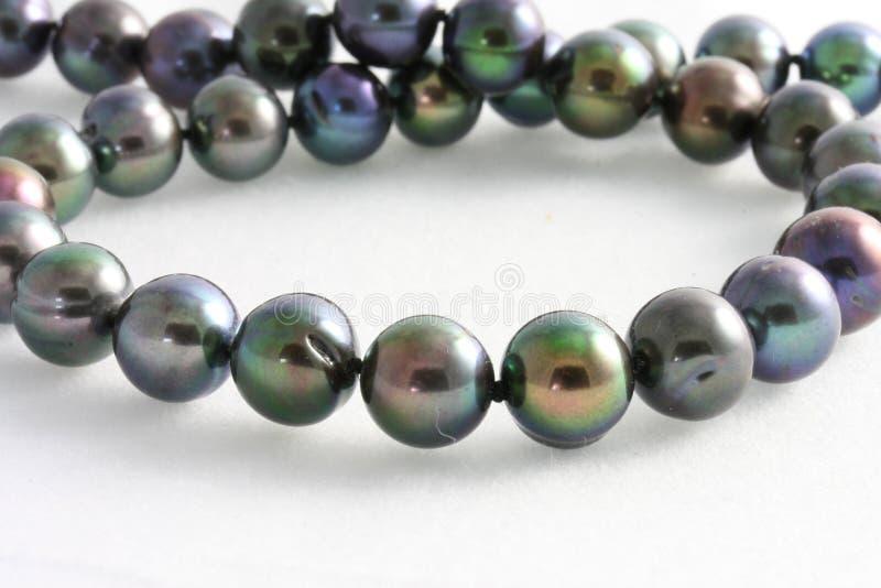 Pearls tahitian stock image