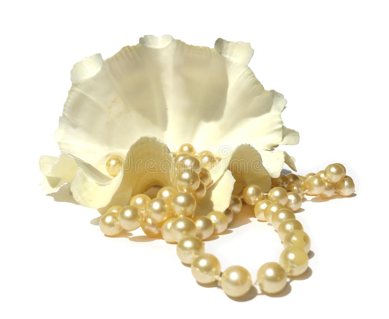 Pearly necklace, large shells coral beads. Isolated on white background royalty free stock photography