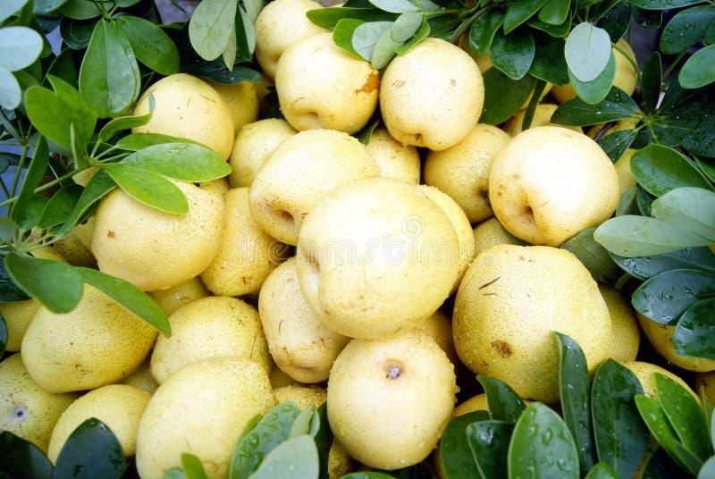 Download Pears stock photo. Image of still, taste, crisp, sell - 20344202