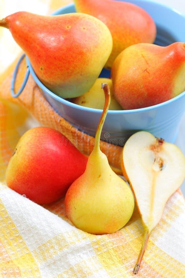 Download Pears stock image. Image of vitamin, health, dessert - 26339759