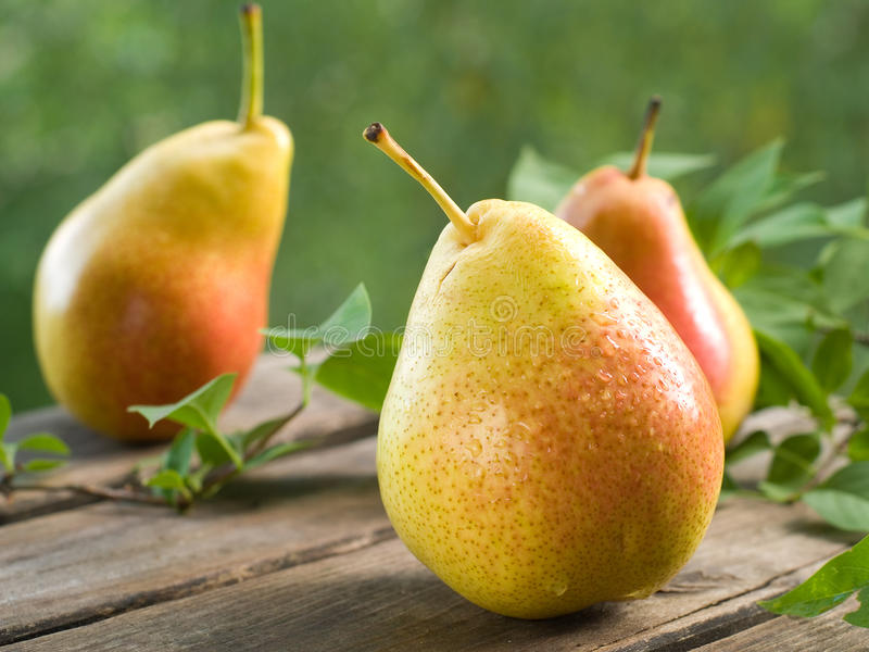 Download Pears stock image. Image of leaf, healthy, sweet, fruit - 26352771