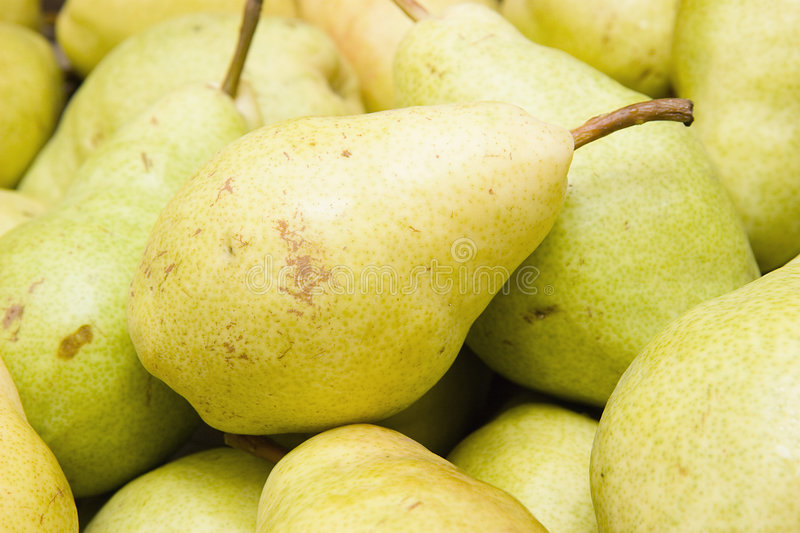 Download Pears stock photo. Image of fruit, health, juice, bottom - 6272920
