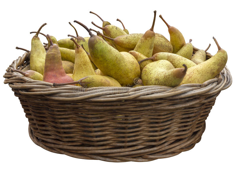 Pears in a basket. Pears in a wooden basket isolated on white background with Clipping Path royalty free stock photography