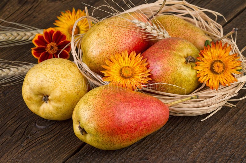 Pears decorated with dried straw and wheat on old wooden table stock image