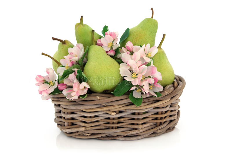 Pears And Flower Blossom Stock Image