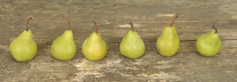 pears row tre royaltyfri bild