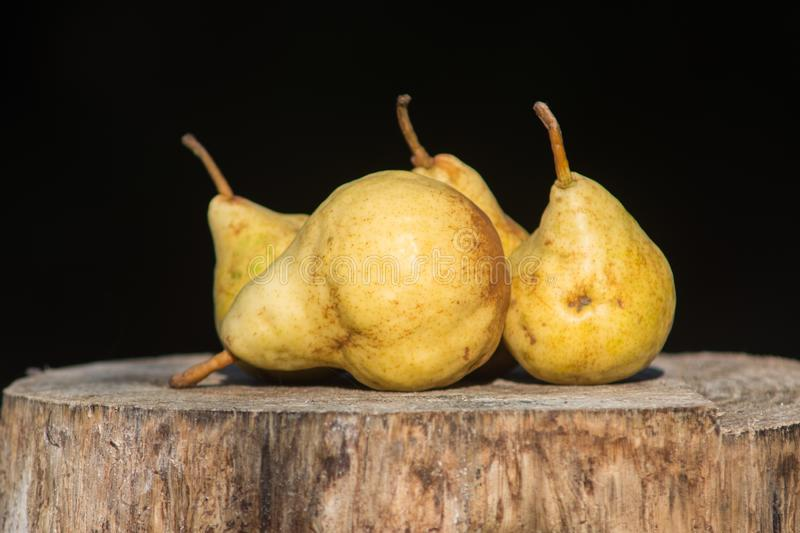 Pears on the stump royalty free stock photo