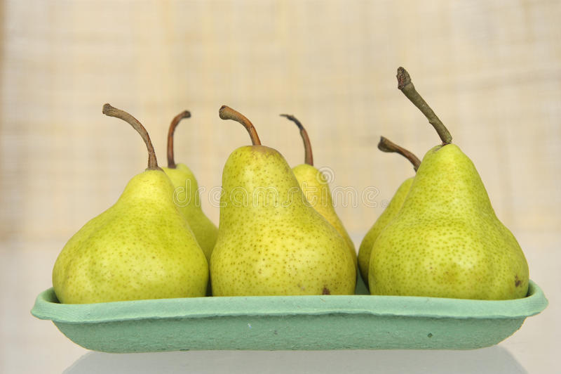 pears tre arkivbild