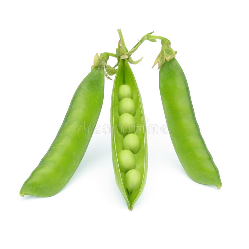 Peas royalty free stock images