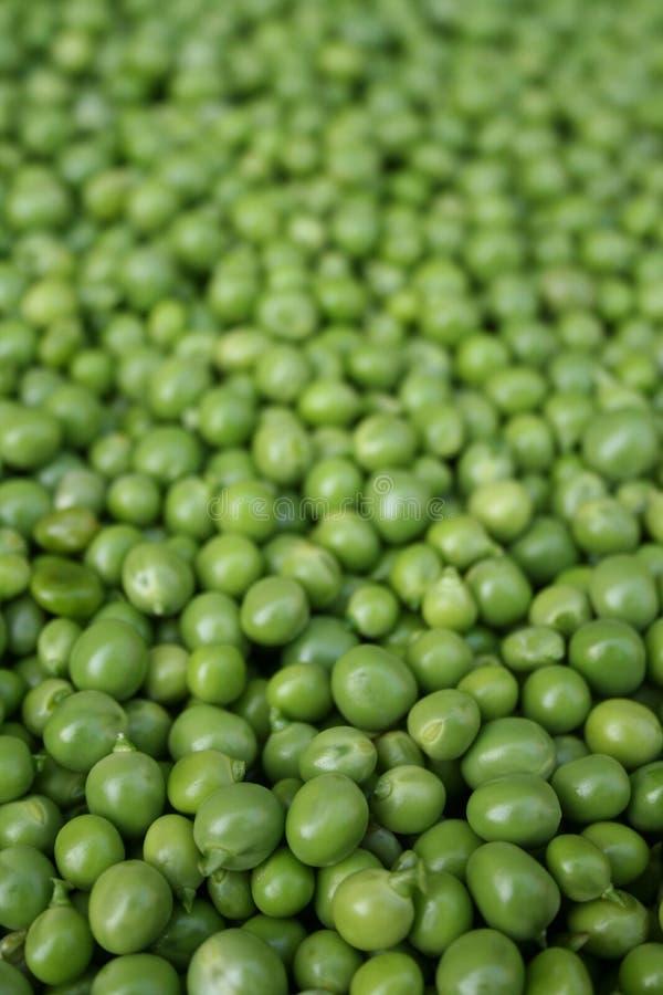 Peas2 foto de stock