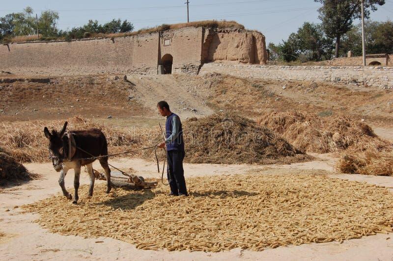 Peasantry Великой Китайской Стены и Китая стоковое изображение rf