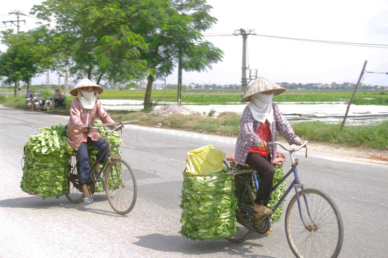 Peasants in bike stock photos