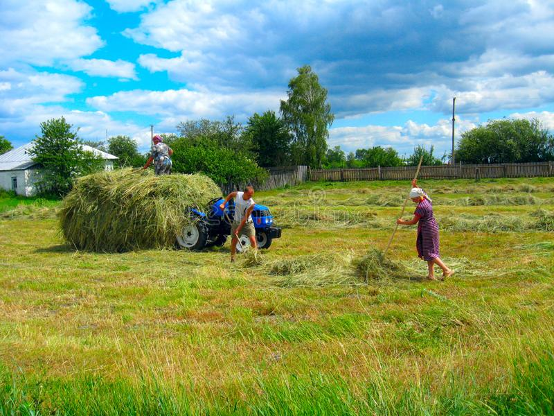 Peasants load the hay in the village royalty free stock image