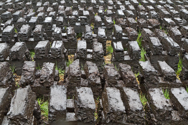 Download Peat Digging In An Upland Moor Stock Photo - Image: 24793564