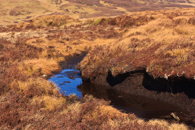 Download Peat hag stock photo. Image of decomposition, services - 18824678
