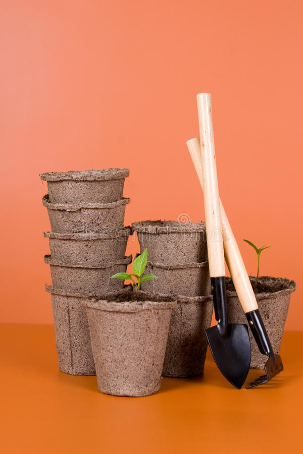 Download Peat Pots, Seedlings And Garden Tools Royalty Free Stock Images - Image: 24182389