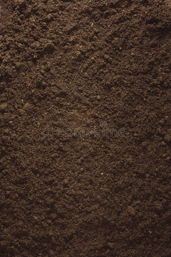 Peat Soil. On white background stock images