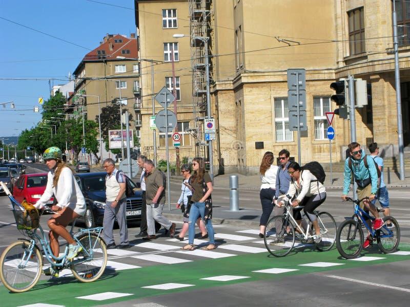 Peatones y ciclistas en el paso de peatones fotografía de archivo libre de regalías