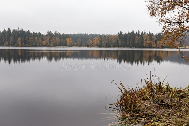 Peats de Kladska da reserva natural fotografia de stock