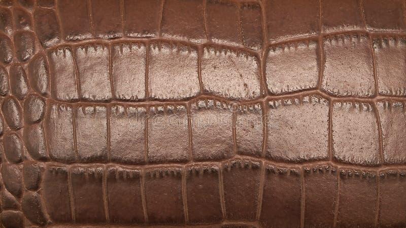 Peau de Brown photos stock