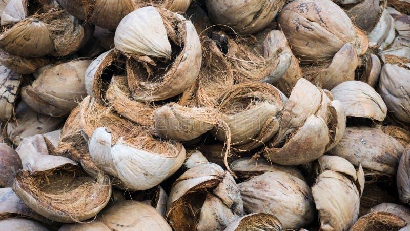 Peau de coquille de noix de coco avec le paquet brun de couleur dans le pays tropical de l'Indonésie image stock