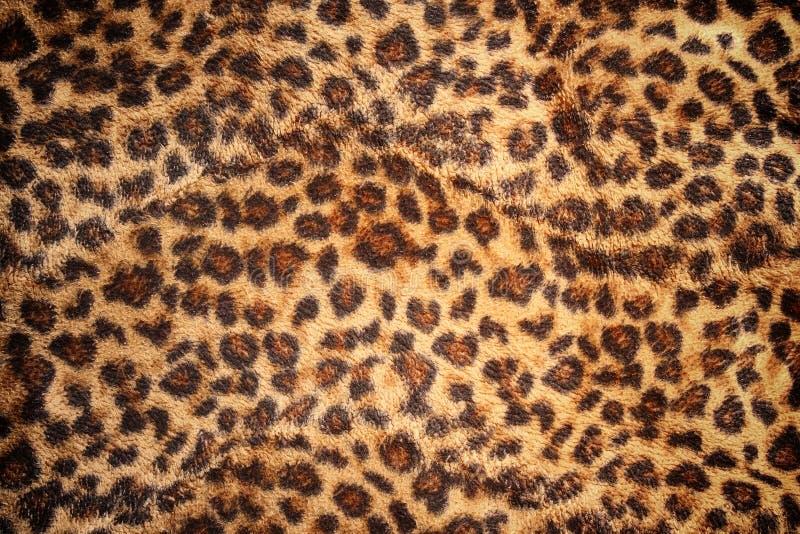 Peau de modèle de léopard pour le fond photos libres de droits
