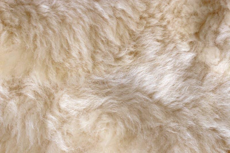 Peau de moutons images libres de droits