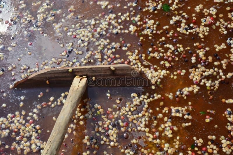 Peau de nettoyage organique produite de grain de café d'ensemble industriel images stock