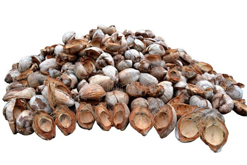 Download Peau de noix de coco photo stock. Image du nikon, vieux - 45367826