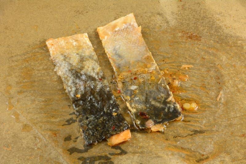 Peau de surplus des filets de poissons saumonés photographie stock libre de droits