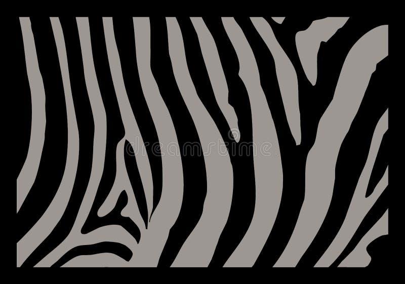 Peau de zèbre illustration libre de droits