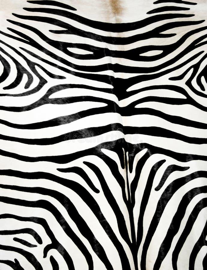 Download Peau de zèbre photo stock. Image du afrique, cuir, chasse - 2140068