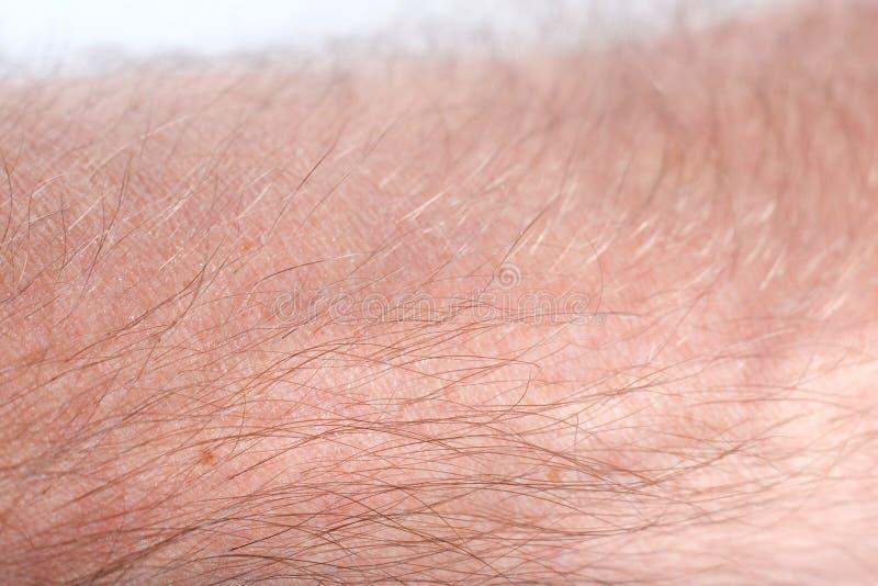 Peau humaine photo stock. Image du pores, homme, texture - 12796548