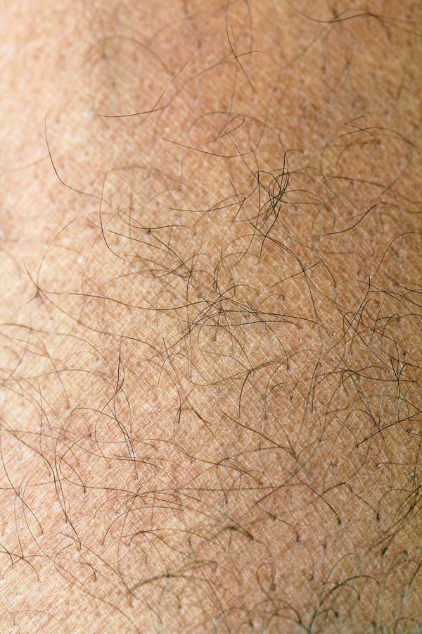 Peau humaine avec des brins de fin de cheveu vers le haut photo stock